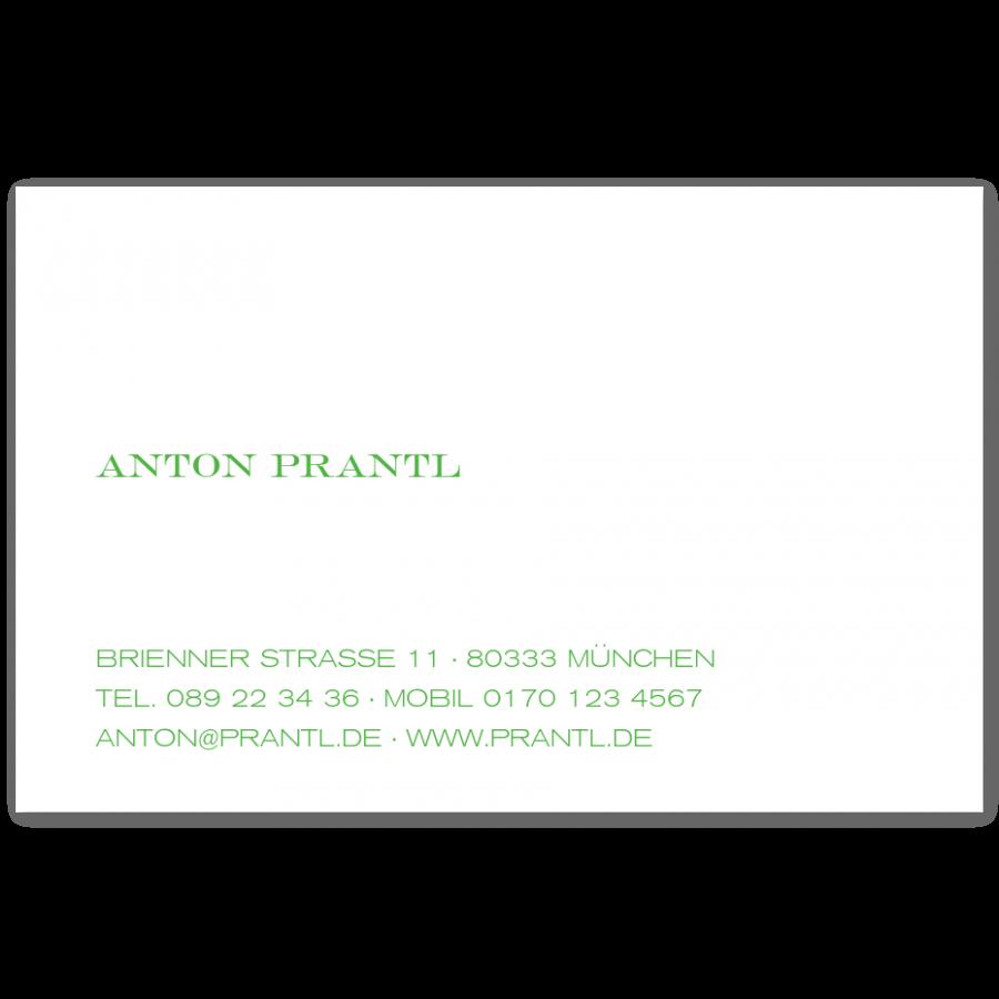 Stahlstich Visitenkarten Linksbündig Prantl Seit 1797
