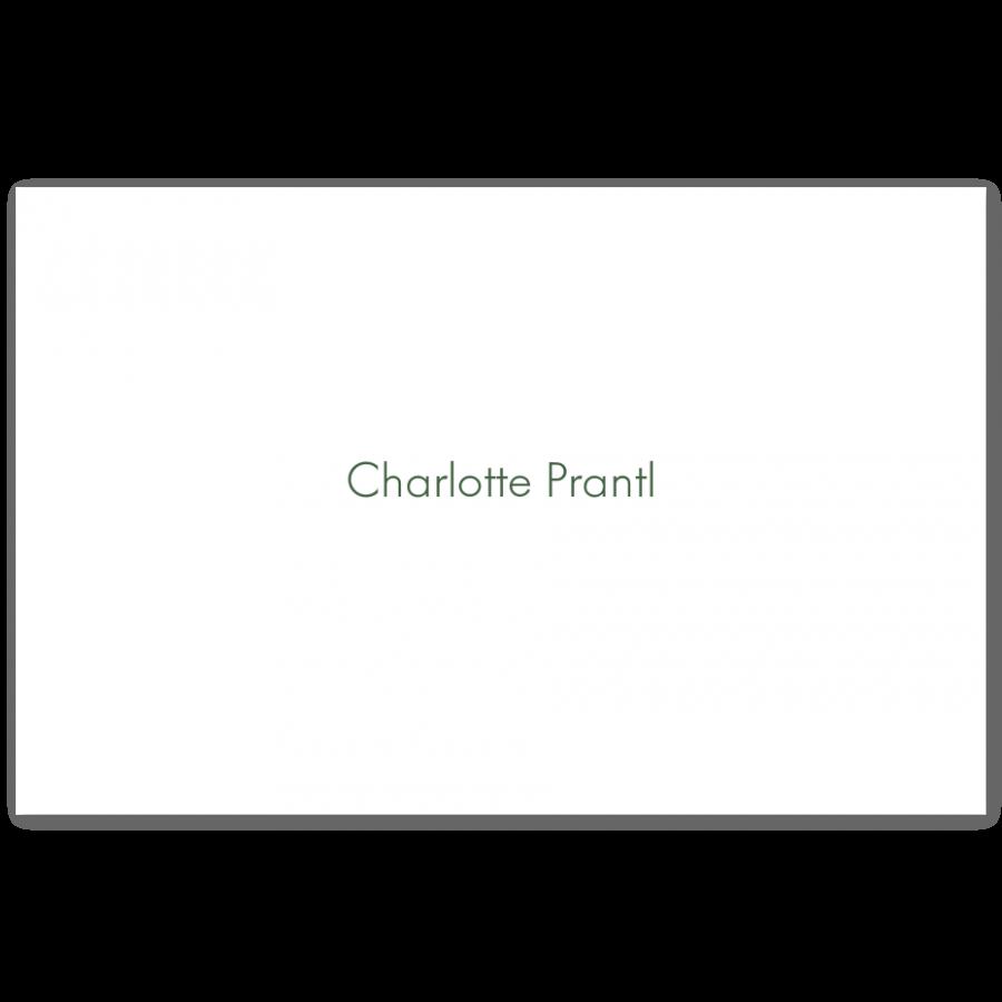 Stahlstich Visitenkarten Mit Namen Prantl Seit 1797